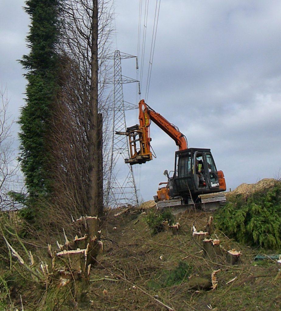 Mechanical tree felling
